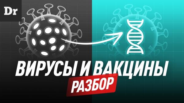 Вирусы и все виды вакцин: Разбор