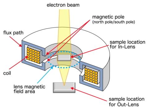 Как работает электронный микроскоп? Разбор